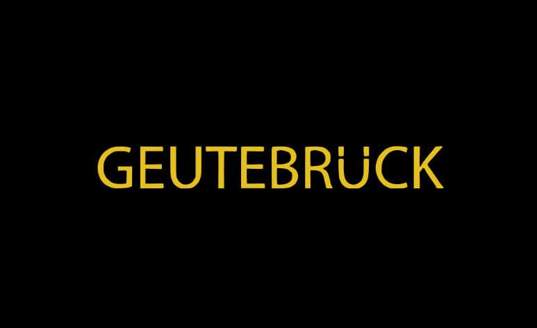 Geutebruck integration